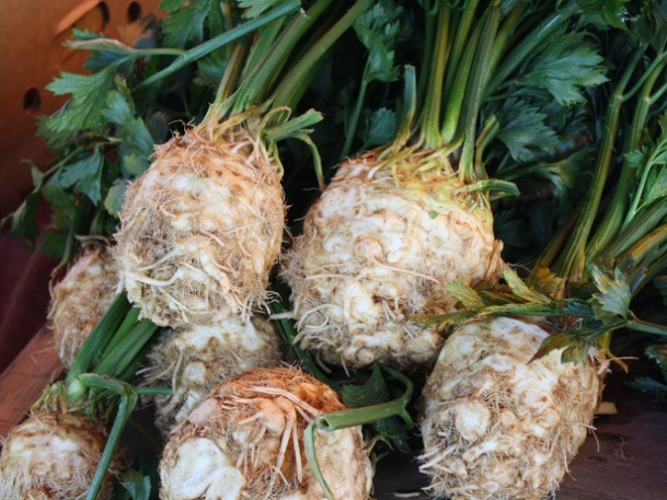 Root-Veggies_Celeriac_s4x3_lg