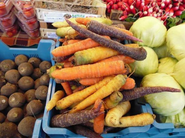 multicolor carrots