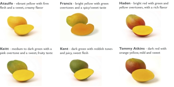 Mango-Varieties-courtesy-of-the-National-Mango-Board